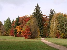 Park Pałacowy jesienią